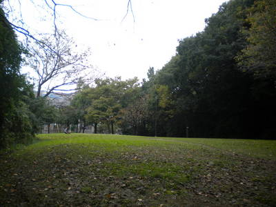 DSCN1059.JPG